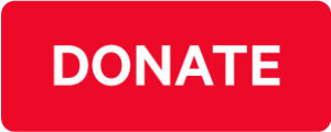 DONATE-BUTTON-300x120